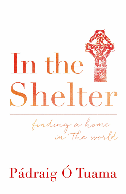 In the Shelter book cover