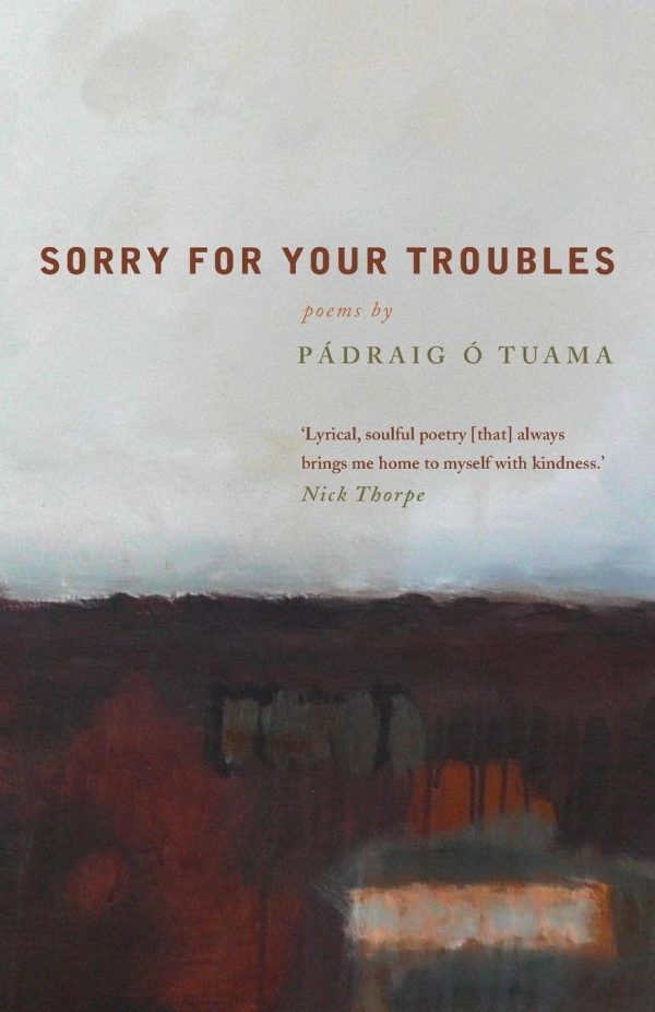 Sorry for your Troubles book cover